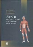 Атлас нормальной анатомии человека  Учебное пособие 4-е изд.