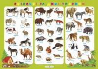 Плакат «Свійські та дикі тварини». Корнєєва О.