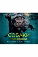 Собаки під водою. Мокрі і смішні