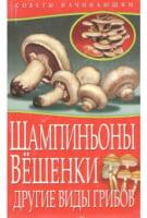 Шампиньоны. Вешенки. Другие виды грибов.