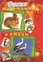 Школьный набор «Дикие животные и птицы»