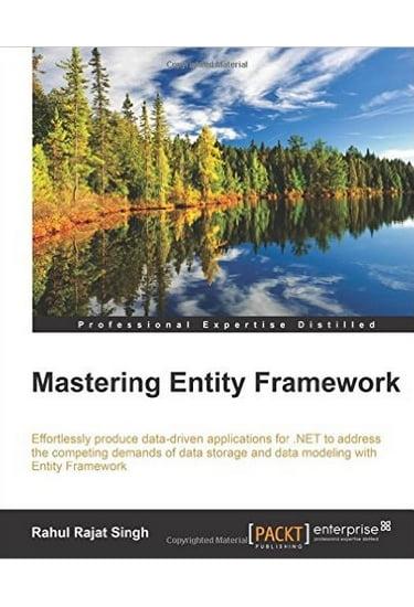 Mastering+Entity+Framework - фото 1