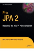 Pro JPA 2. Mastering the Java™ Persistence API (Expert's Voice in Java Technology)