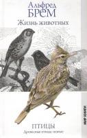 Жизнь животных. Птицы. Древесные птицы: певчие.
