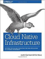 Cloud Native Infrastructure: Patterns for Scalable Infrastructure and Applications in a Dynamic Environment 1st Edition