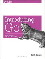 Introducing Go: Build Reliable, Scalable Programs 1st Edition