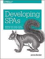 Developing SPAs: Working with Visual Studio, Angular, and ASP.NET Web API 1st Edi