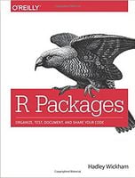 R Packages: Organize, Test, Document, and Share Your Code 1st Editio