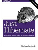 Just Hibernate: A Lightweight Introduction to the Hibernate Framework 1st Edition