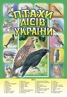 Птахи лісів України.Комплект наочності.