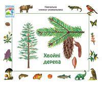 Хвойні дерева. Навчальна книжка-розмальовка