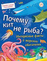 Почему кит не рыба? Интересные факты о морских обитателях 5+