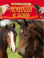 Лошади и пони. Детская энциклопедия