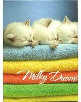 Блокноти А6 Серія Assorti  Milky dreams