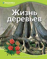Життя дерев