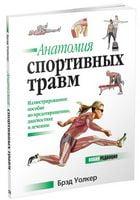 Анатомія спортивних травм.