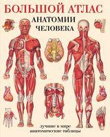 Большой атлас анатомии человека (мяг)