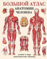 Большой атлас анатомии человека (тв)