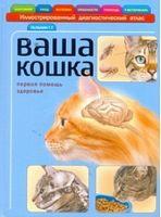 Ваша кішка