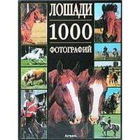 Коні.1000 фотографій