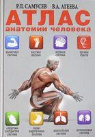 Атлас анатомії людини (АСТ)