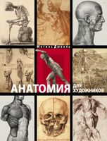 Анатомія для художників