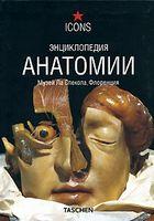Енциклопедія анатомії