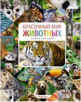 Барвистий світ тварин