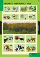 Природознавство, 3-4 кл. НМК (11 плакатів). ISBN 978-617-667-031-5